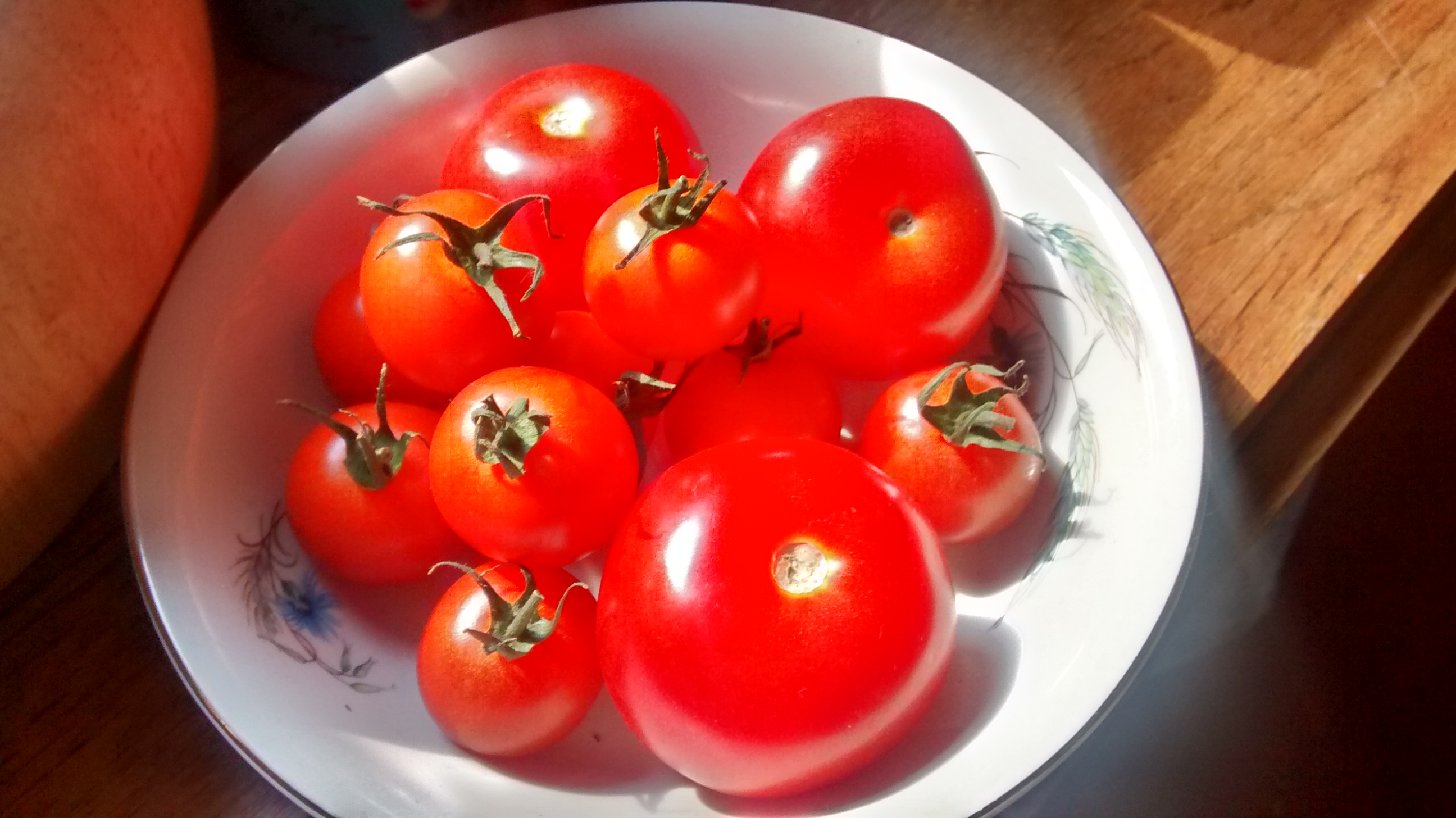 Tomato Salad | Journey From A Polish Kitchen